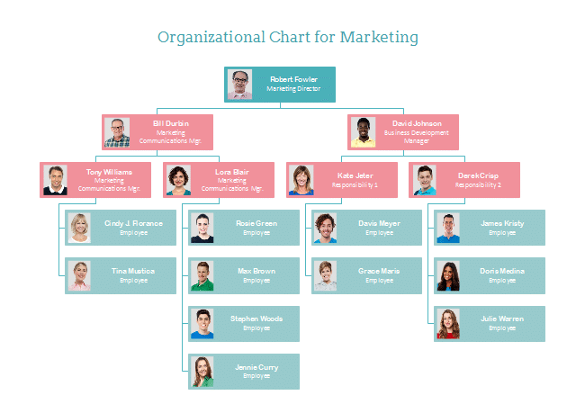 organizational chart for visual organization